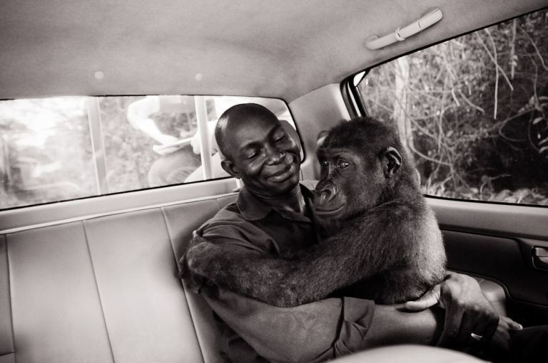 Pikin and Appolinaire - Jo-Anne McArthur
