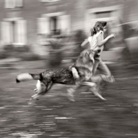 Alain Laboile, Summer of the fawn_15