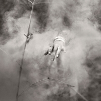 Alain Laboile, Summer of the fawn_19