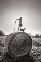 Alain Laboile, Summer of the fawn_8